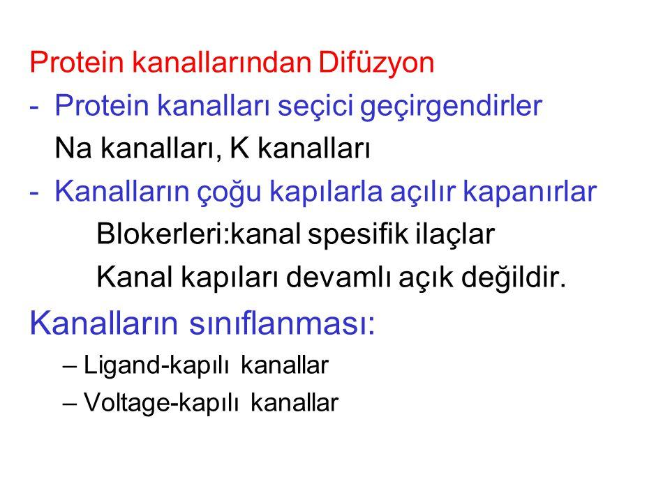 Kolaylaştırılmış Difüzyon: Taşıyıcı aracılığıyla difüzyon. Örn. Glikoz, amino asitler
