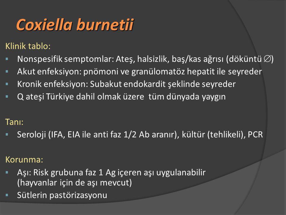 Coxiella burnetii Klinik tablo: § Nonspesifik semptomlar: Ateş, halsizlik, baş/kas ağrısı (döküntü  ) § Akut enfeksiyon: pnömoni ve granülomatöz hepatit ile seyreder § Kronik enfeksiyon: Subakut endokardit şeklinde seyreder § Q ateşi Türkiye dahil olmak üzere tüm dünyada yaygın Tanı:  Seroloji (IFA, EIA ile anti faz 1/2 Ab aranır), kültür (tehlikeli), PCR Korunma:  Aşı: Risk grubuna faz 1 Ag içeren aşı uygulanabilir (hayvanlar için de aşı mevcut)  Sütlerin pastörizasyonu