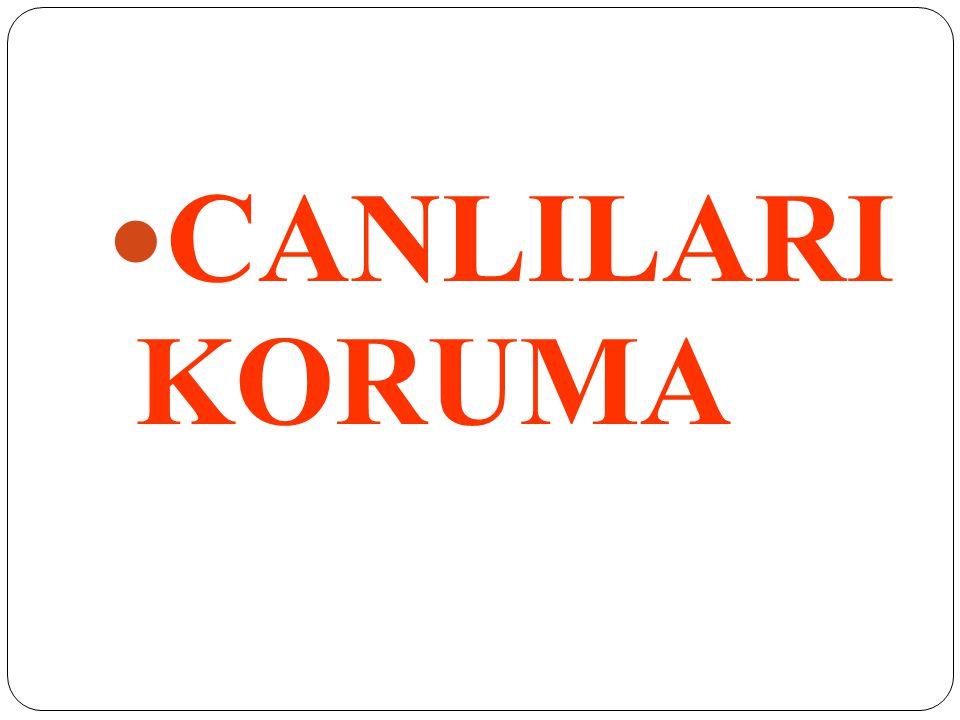 CANLILARI KORUMA