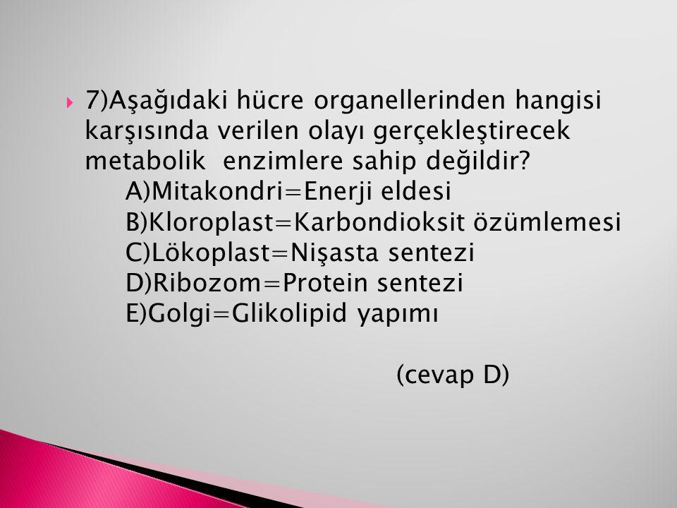  7)Aşağıdaki hücre organellerinden hangisi karşısında verilen olayı gerçekleştirecek metabolik enzimlere sahip değildir? A)Mitakondri=Enerji eldesi B