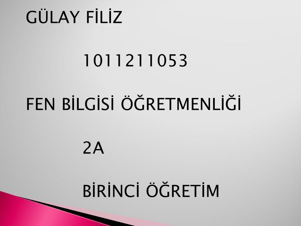 GÜLAY FİLİZ 1011211053 FEN BİLGİSİ ÖĞRETMENLİĞİ 2A BİRİNCİ ÖĞRETİM