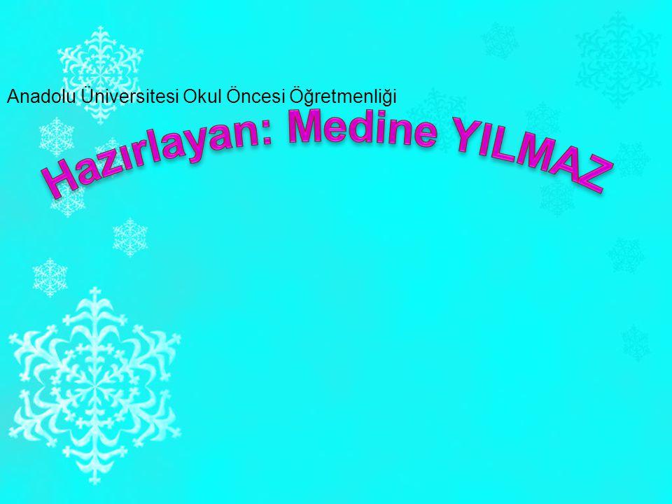 Anadolu Üniversitesi Okul Öncesi Öğretmenliği