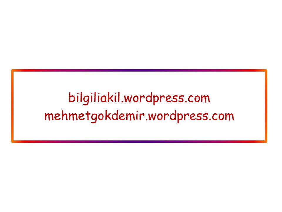bilgiliakil.wordpress.com mehmetgokdemir.wordpress.com