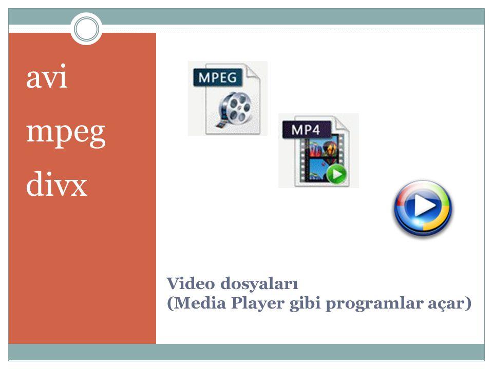 Video dosyaları (Media Player gibi programlar açar) avi mpeg divx