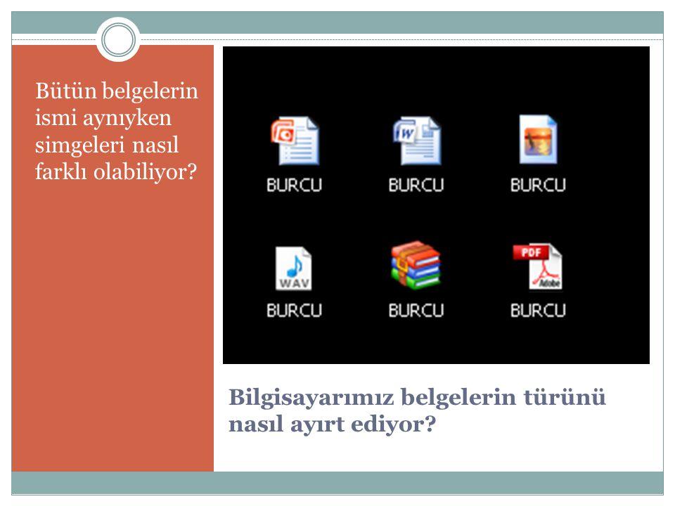 PDF dosyaları (Adobe Acrobat programı açar) pdf