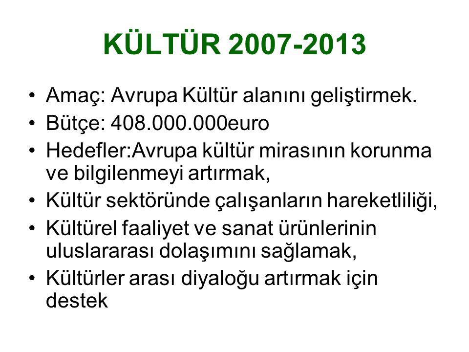 KÜLTÜR 2007-2013 Amaç: Avrupa Kültür alanını geliştirmek.