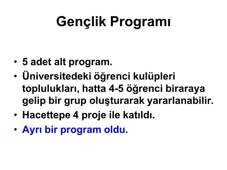 Gençlik Programı 5 adet alt program.