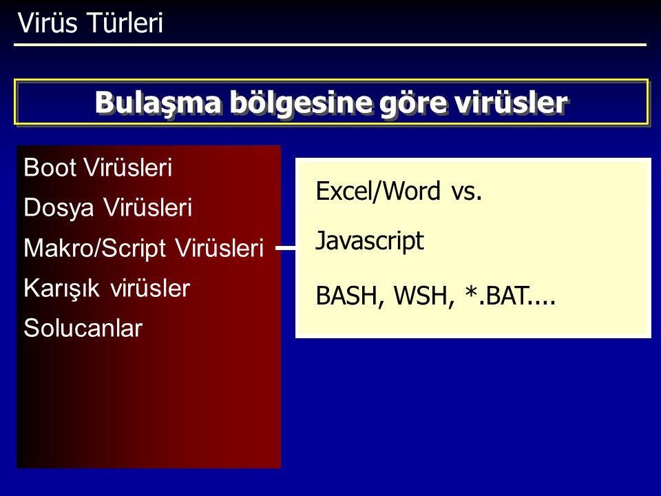 Virüs Türleri Boot Virüsleri Dosya Virüsleri Makro/Script Virüsleri Karışık virüsler Solucanlar Bulaşma bölgesine göre virüsler Excel/Word vs. Javascr