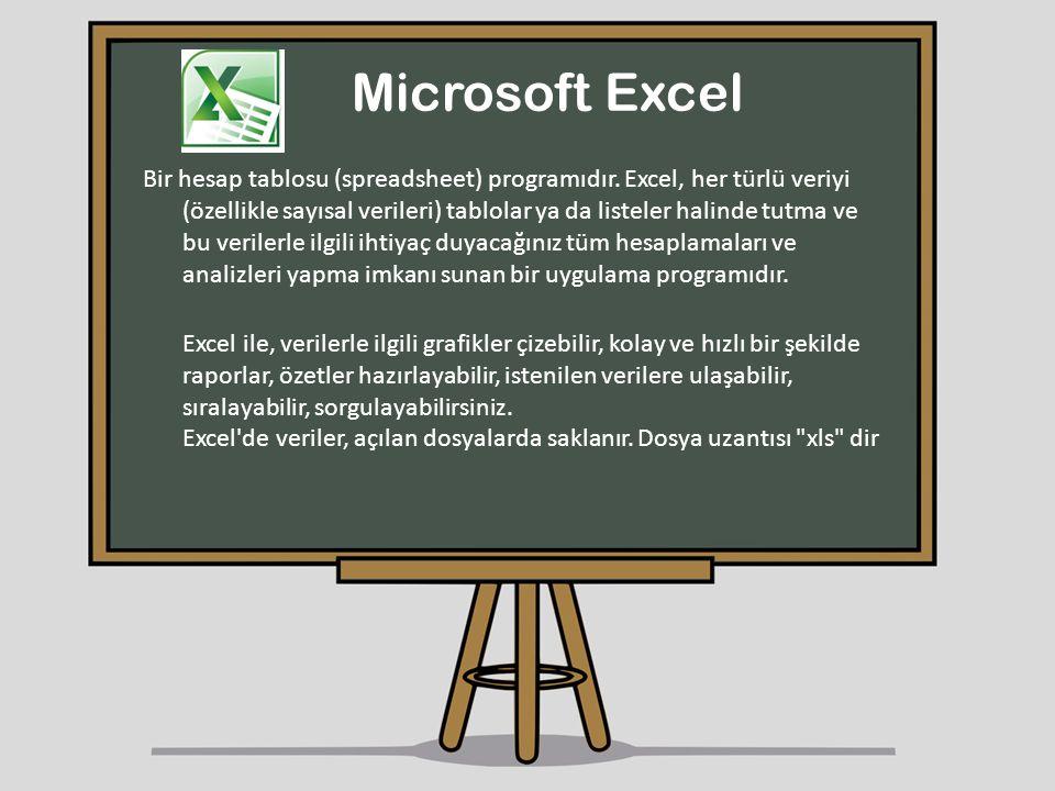 Microsoft Excel Bir hesap tablosu (spreadsheet) programıdır. Excel, her türlü veriyi (özellikle sayısal verileri) tablolar ya da listeler halinde tutm