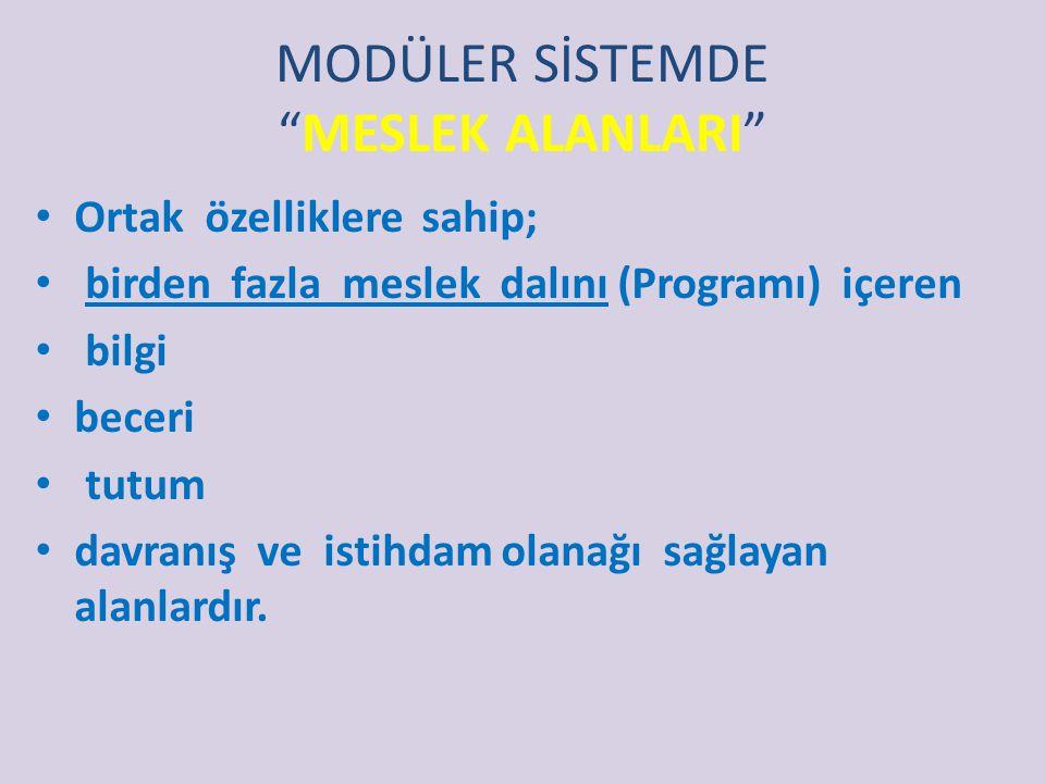 Modüler sistemi tutarlı bir eğitsel tasarım yapan özellikler şunlardır Öğrenme süreci ve kursiyerin gelişimi net bir şekilde belirlenmiştir. Meslek da