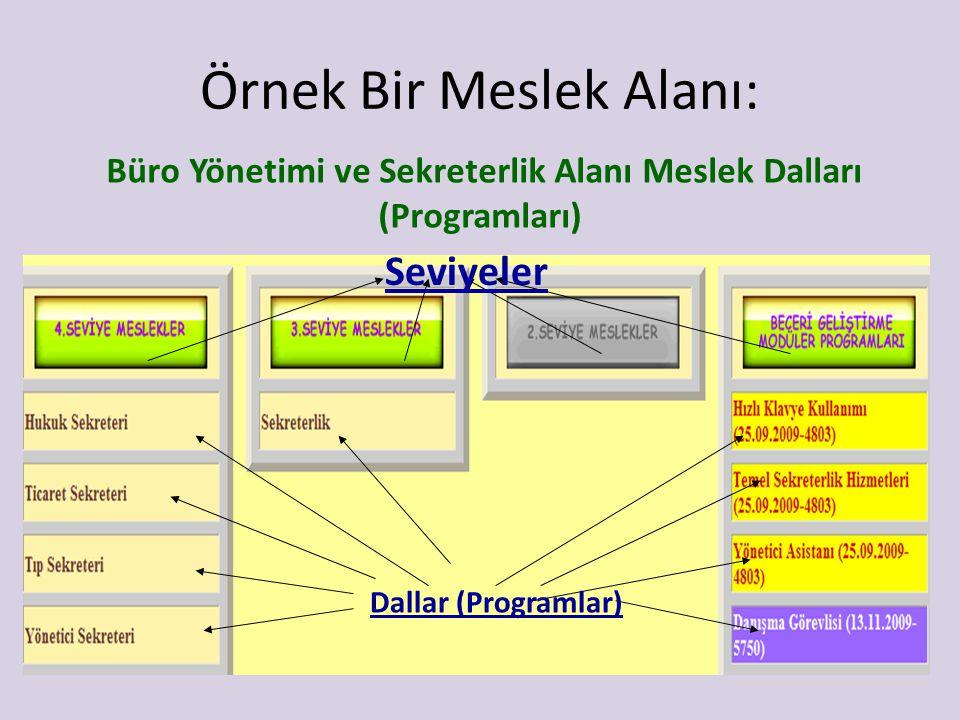 Örnek Bir Meslek Alanı: Büro Yönetimi ve Sekreterlik Alanı Meslek Dalları (Programları) Seviyeler Dallar (Programlar)