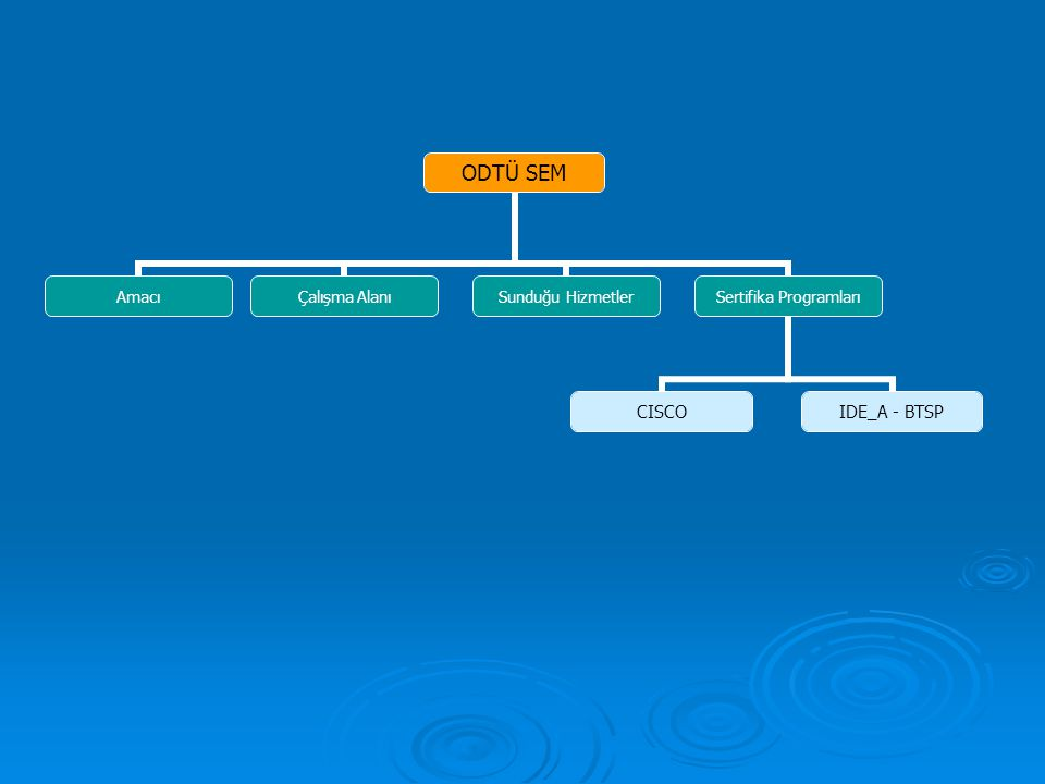 ODTÜ SEM Amacı Çalışma Alanı Sunduğu Hizmetler Sertifika Programları CISCO IDE_A - BTSP