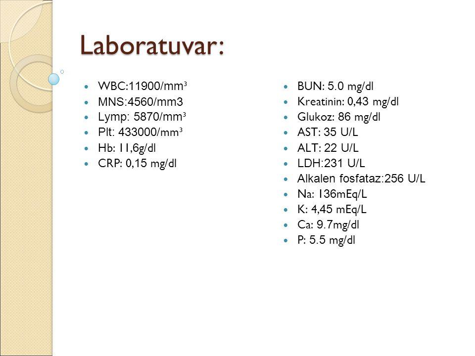 Laboratuvar: WBC: 11900/mm ³ MNS:4560/mm3 Lymp: 5870/mm ³ Plt: 433000 /mm³ Hb: 11, 6 g/dl CRP: 0, 15 mg/dl BUN: 5.0 mg/dl Kreatinin: 0, 43 mg/dl Glukoz: 86 mg/dl AST: 35 U/L ALT: 22 U/L LDH:231 U/L Alkalen fosfataz:256 U/L Na: 1 36 mEq/L K: 4, 45 mEq/L Ca: 9.7 mg/dl P: 5.5 mg/dl