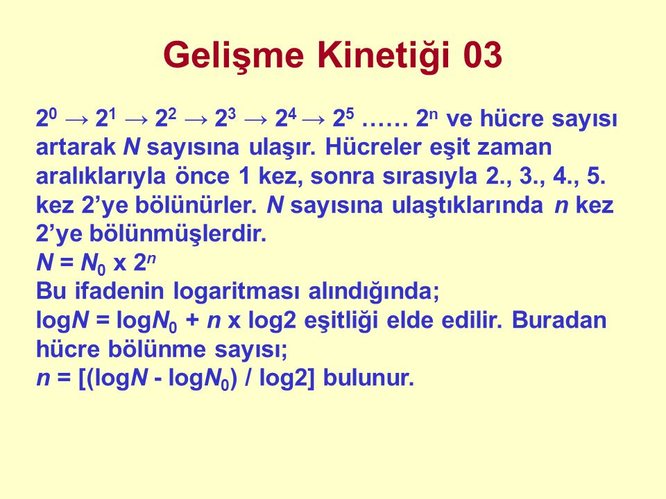 Gelişme Kinetiği 03 2 0 → 2 1 → 2 2 → 2 3 → 2 4 → 2 5 …… 2 n ve hücre sayısı artarak N sayısına ulaşır.