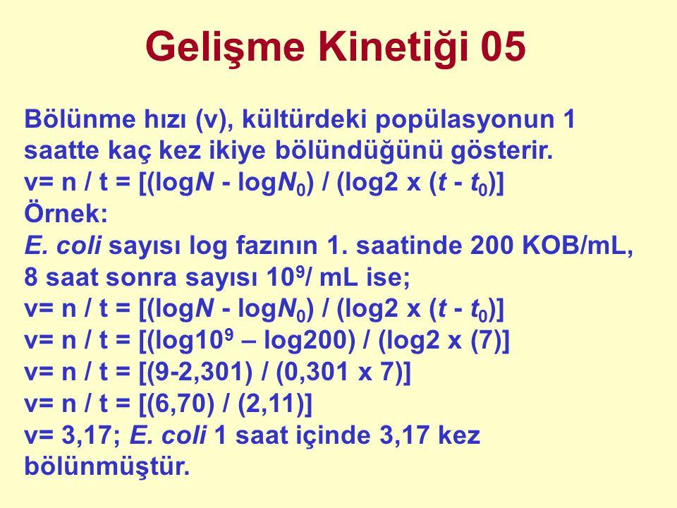 Gelişme Kinetiği 05 Bölünme hızı (v), kültürdeki popülasyonun 1 saatte kaç kez ikiye bölündüğünü gösterir.