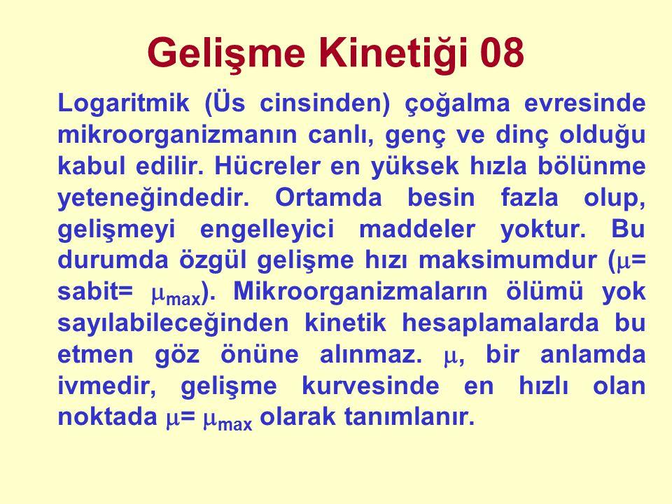 Gelişme Kinetiği 08 Logaritmik (Üs cinsinden) çoğalma evresinde mikroorganizmanın canlı, genç ve dinç olduğu kabul edilir.