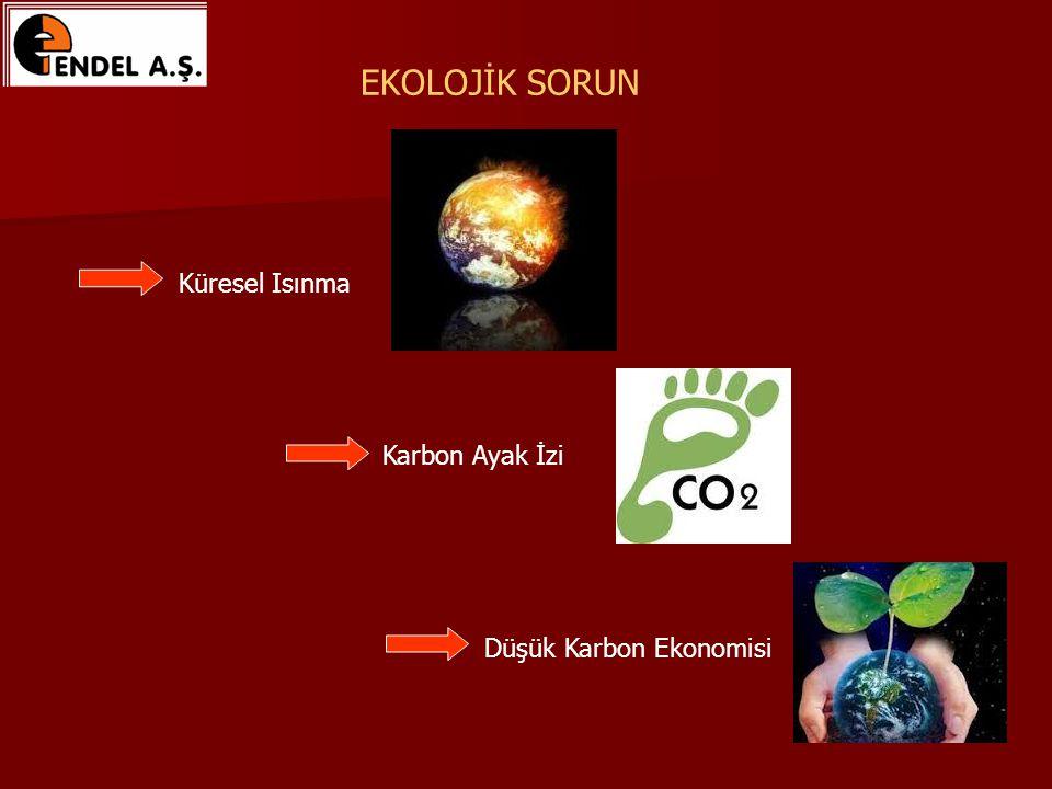 Düşük Karbon Ekonomisi Karbon Ayak İzi Küresel Isınma EKOLOJİK SORUN