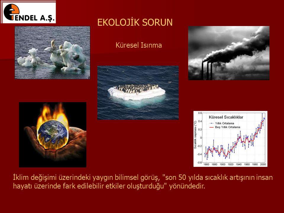 İklim değişimi üzerindeki yaygın bilimsel görüş, son 50 yılda sıcaklık artışının insan hayatı üzerinde fark edilebilir etkiler oluşturduğu yönündedir.