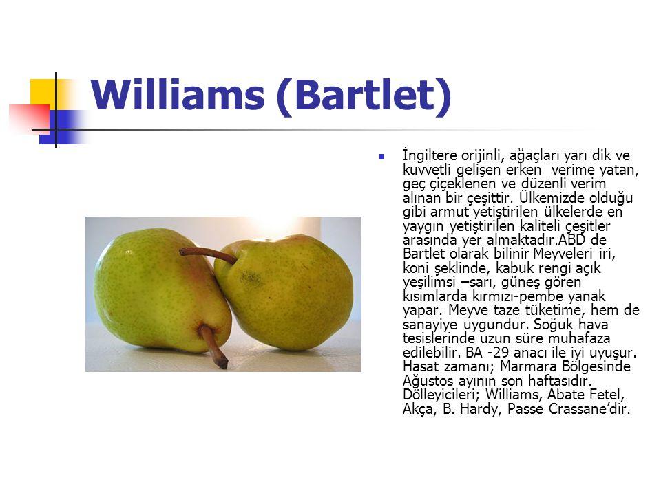 Williams (Bartlet) İngiltere orijinli, ağaçları yarı dik ve kuvvetli gelişen erken verime yatan, geç çiçeklenen ve düzenli verim alınan bir çeşittir.