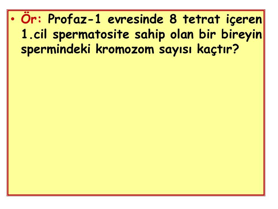Ör: Profaz-1 evresinde 8 tetrat içeren 1.cil spermatosite sahip olan bir bireyin spermindeki kromozom sayısı kaçtır?