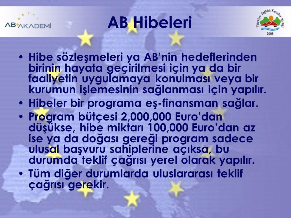 AB Hibeleri Hibe sözleşmeleri ya AB'nin hedeflerinden birinin hayata geçirilmesi için ya da bir faaliyetin uygulamaya konulması veya bir kurumun işlemesinin sağlanması için yapılır.