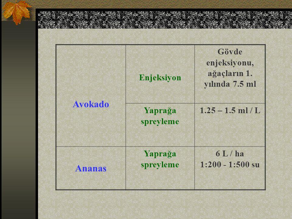 Avokado Enjeksiyon Gövde enjeksiyonu, ağaçların 1.