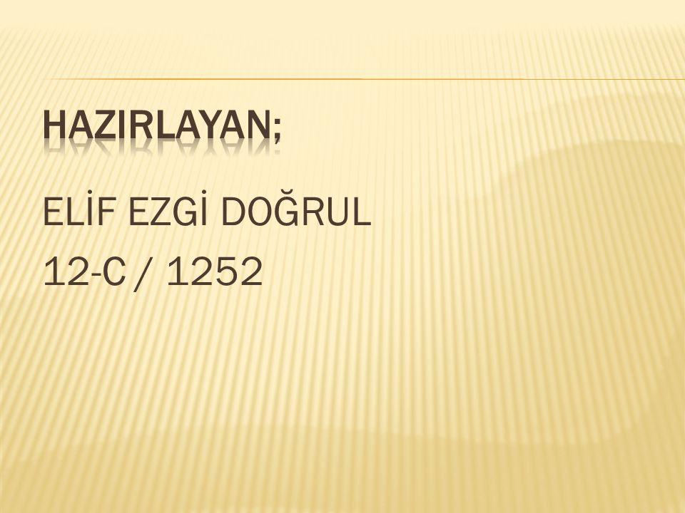 ELİF EZGİ DOĞRUL 12-C / 1252