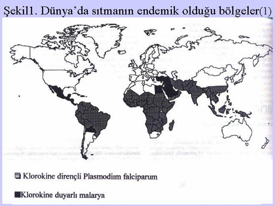 Şekil1. Dünya'da sıtmanın endemik olduğu bölgeler (1)