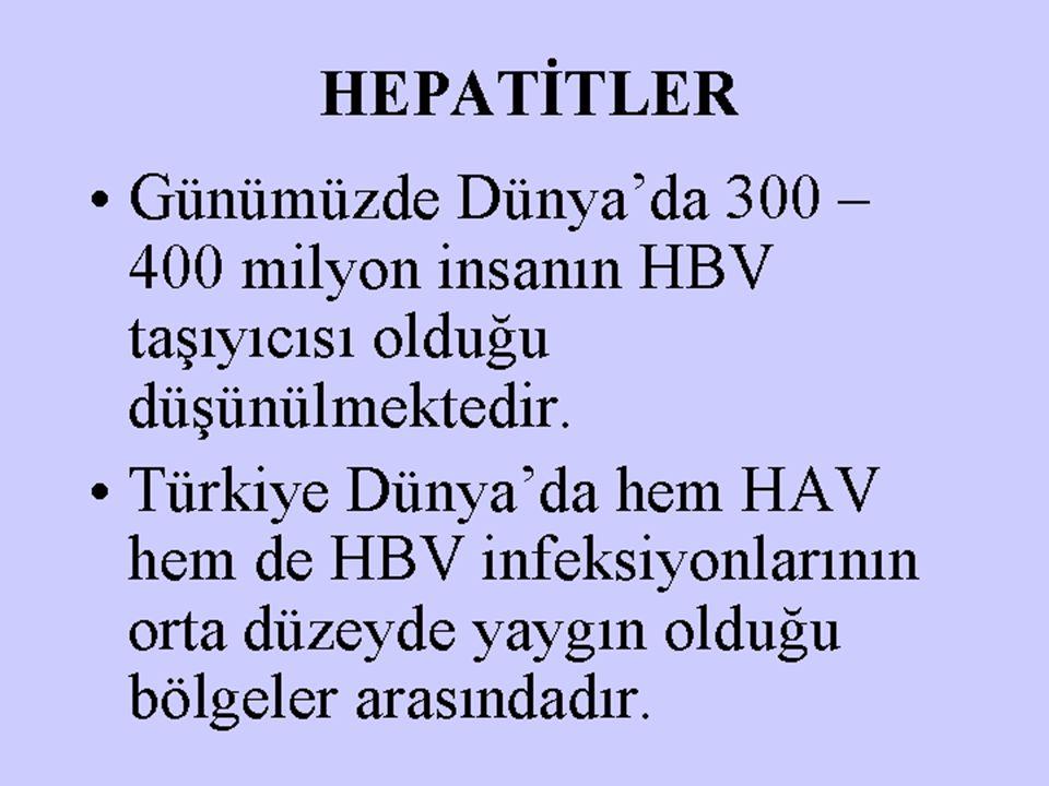 HEPATİTLER Günümüzde Dünya'da 300 – 400 milyon insanın HBV taşıyıcısı olduğu düşünülmektedir. Türkiye Dünya'da hem HAV hem de HBV infeksiyonlarının or