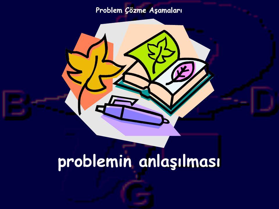NEDEN PROBLEM
