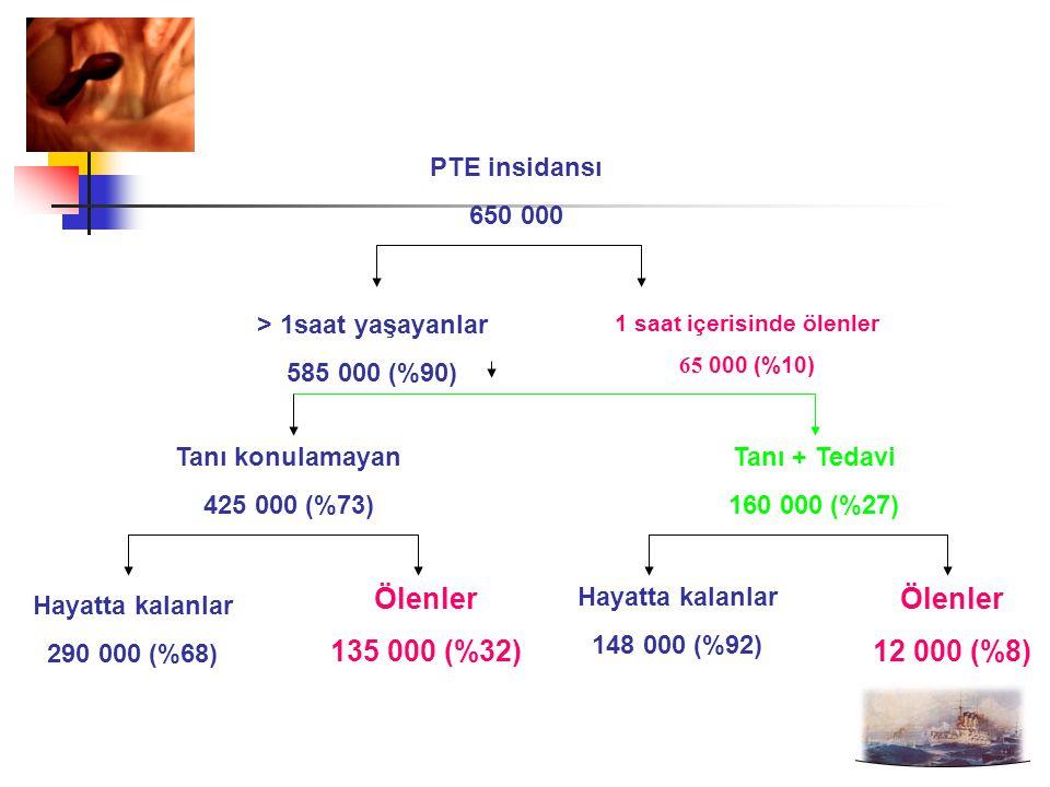 PTE insidansı 650 000 > 1saat yaşayanlar 585 000 (%90) 1 saat içerisinde ölenler 65 000 (%10) Tanı konulamayan 425 000 (%73) Tanı + Tedavi 160 000 (%27) Ölenler 135 000 (%32) Hayatta kalanlar 290 000 (%68) Ölenler 12 000 (%8) Hayatta kalanlar 148 000 (%92)