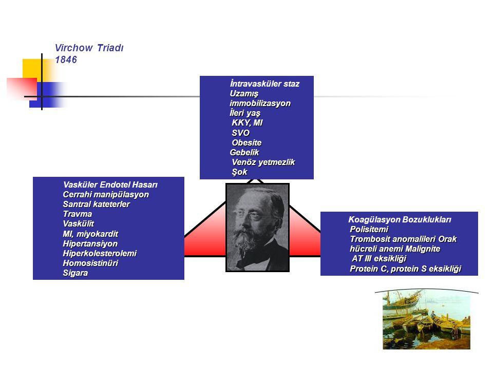 Virchow Triadı 1846 İntravasküler staz Uzamış immobilizasyon İleri yaş KKY, MI KKY, MI SVO SVO Obesite ObesiteGebelik Venöz yetmezlik Venöz yetmezlik Şok Şok Vasküler Endotel Hasarı Cerrahi manipülasyon Santral kateterler TravmaVaskülit MI, miyokardit HipertansiyonHiperkolesterolemiHomosistinüriSigara Koagülasyon BozukluklarıPolisitemi Trombosit anomalileri Orak hücreli anemi Malignite AT III eksikliği AT III eksikliği Protein C, protein S eksikliği