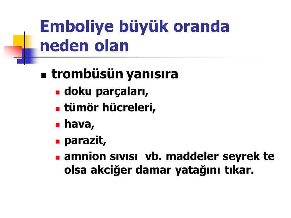 Emboliye büyük oranda neden olan trombüsün yanısıra doku parçaları, tümör hücreleri, hava, parazit, amnion sıvısı vb.