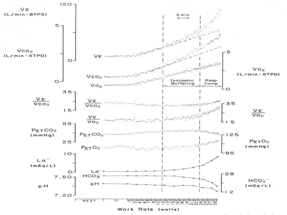 Hafif şiddette sabit yük testi ( L ) 6-8 daklık egzersizler yeterlidir.