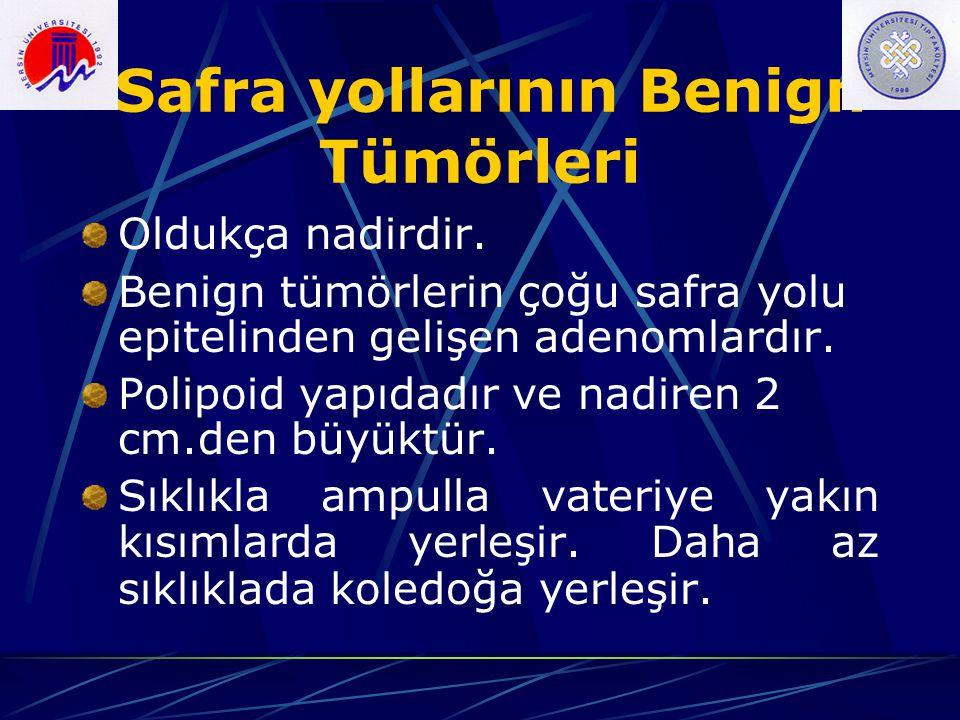 Safra yollarının Benign Tümörleri Oldukça nadirdir. Benign tümörlerin çoğu safra yolu epitelinden gelişen adenomlardır. Polipoid yapıdadır ve nadiren