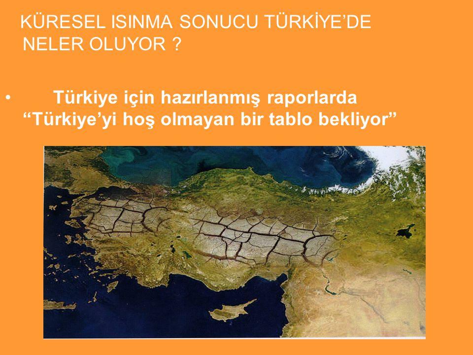 KÜRESEL ISINMA SONUCU TÜRKİYE'DE NELER OLUYOR .