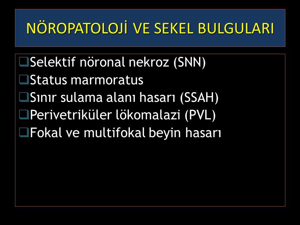  Selektif nöronal nekroz (SNN)  Status marmoratus  Sınır sulama alanı hasarı (SSAH)  Perivetriküler lökomalazi (PVL)  Fokal ve multifokal beyin h