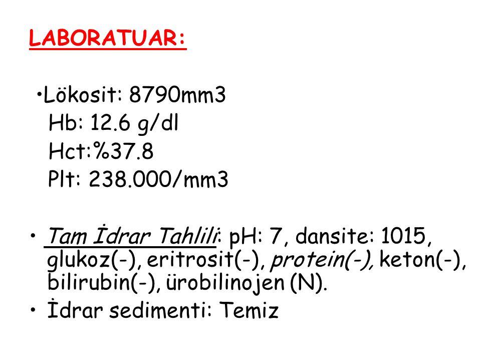 LABORATUAR: Lökosit: 8790mm3 Hb: 12.6 g/dl Hct:%37.8 Plt: 238.000/mm3 Tam İdrar Tahlili: pH: 7, dansite: 1015, glukoz(-), eritrosit(-), protein(-), ke