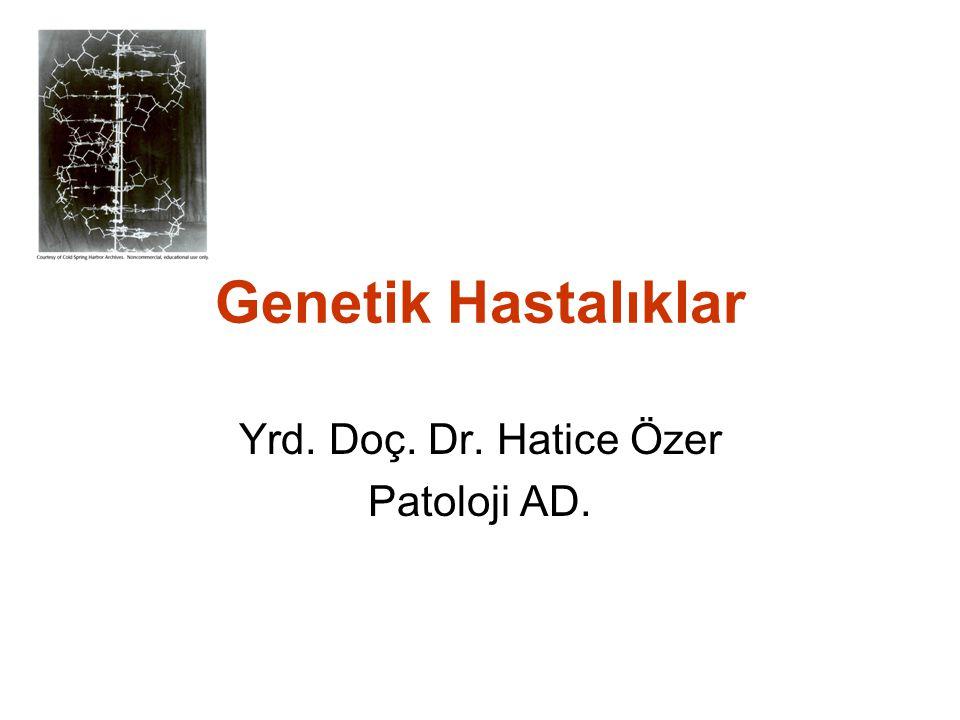 Genetik Hastalıklar Yrd. Doç. Dr. Hatice Özer Patoloji AD.