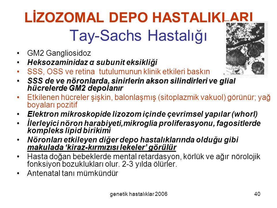 genetik hastalıklar 200640 LİZOZOMAL DEPO HASTALIKLARI Tay-Sachs Hastalığı GM2 Gangliosidoz Heksozaminidaz α subunit eksikliği SSS, OSS ve retina tutu