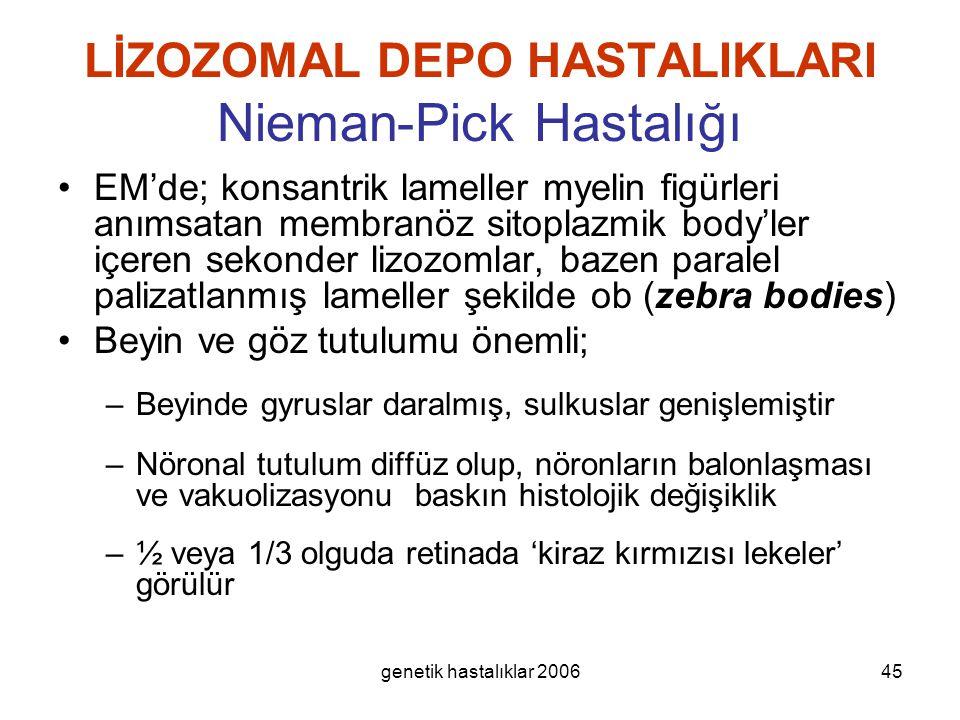 genetik hastalıklar 200645 LİZOZOMAL DEPO HASTALIKLARI Nieman-Pick Hastalığı EM'de; konsantrik lameller myelin figürleri anımsatan membranöz sitoplazm