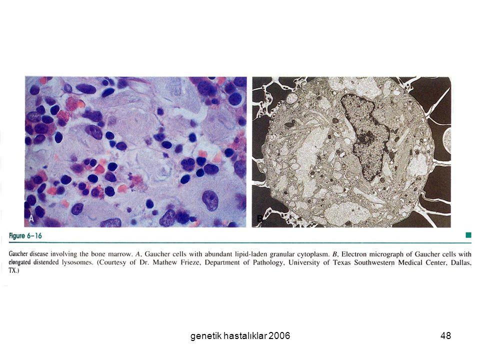 genetik hastalıklar 200648
