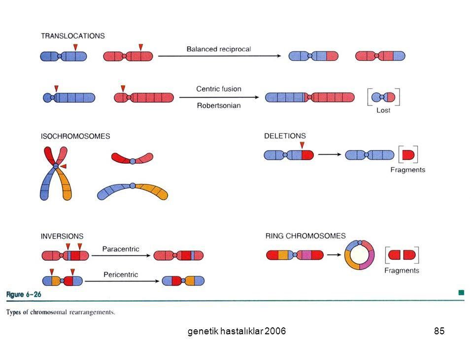 genetik hastalıklar 200685