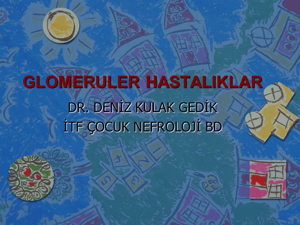 GLOMERULER HASTALIKLAR DR. DENİZ KULAK GEDİK İTF ÇOCUK NEFROLOJİ BD