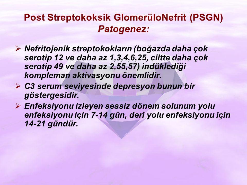 Post Streptokoksik GlomerüloNefrit (PSGN) Patogenez:  Nefritojenik streptokokların (boğazda daha çok serotip 12 ve daha az 1,3,4,6,25, ciltte daha çok serotip 49 ve daha az 2,55,57) indüklediği kompleman aktivasyonu önemlidir.
