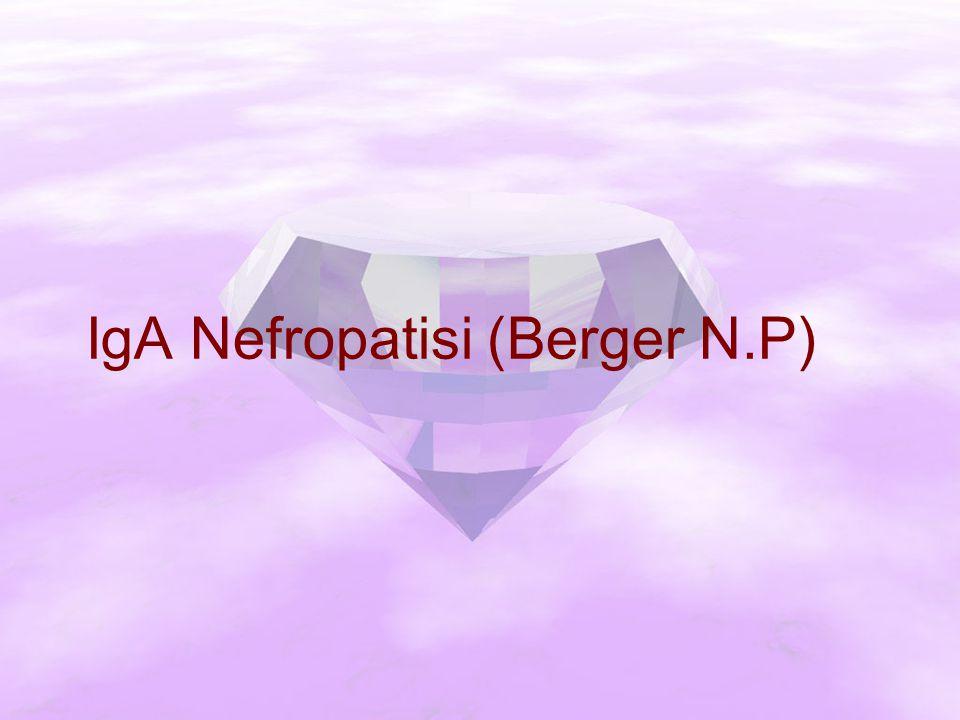 IgA Nefropatisi (Berger N.P)