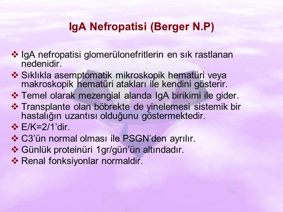  IgA nefropatisi glomerülonefritlerin en sık rastlanan nedenidir.