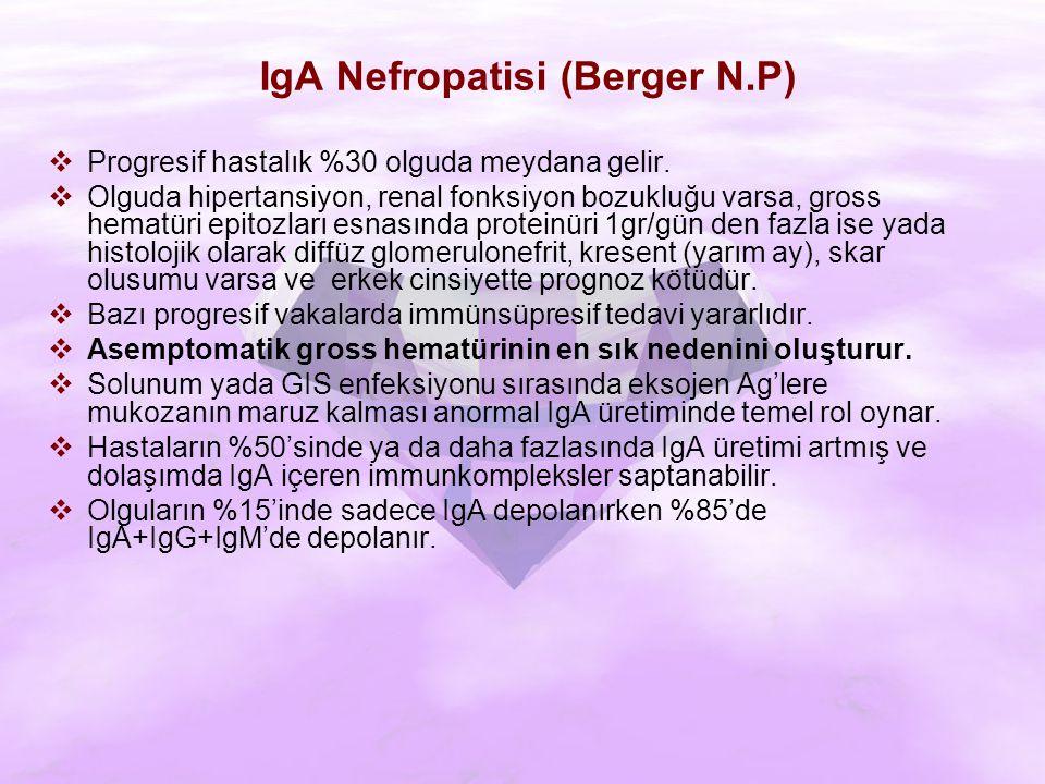 IgA Nefropatisi (Berger N.P)  Progresif hastalık %30 olguda meydana gelir.