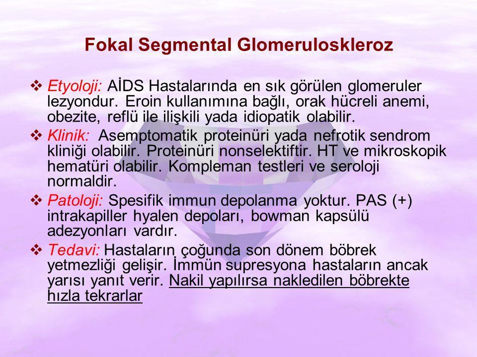 Fokal Segmental Glomeruloskleroz  Etyoloji: AİDS Hastalarında en sık görülen glomeruler lezyondur.