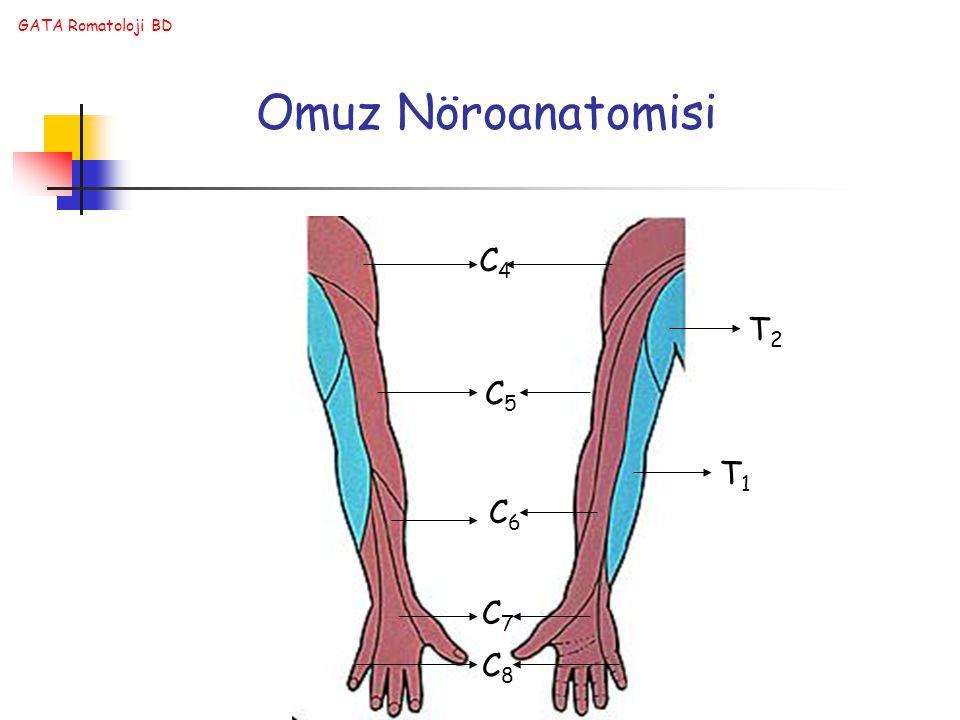 GATA Romatoloji BD C4C4 C5C5 C6C6 C7C7 C8C8 T1T1 T2T2 Omuz Nöroanatomisi